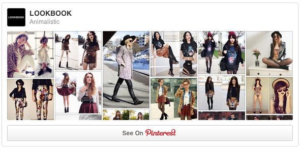 Lookbook BoardWidget do Pinterest