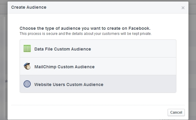 Website Custom Audiences.